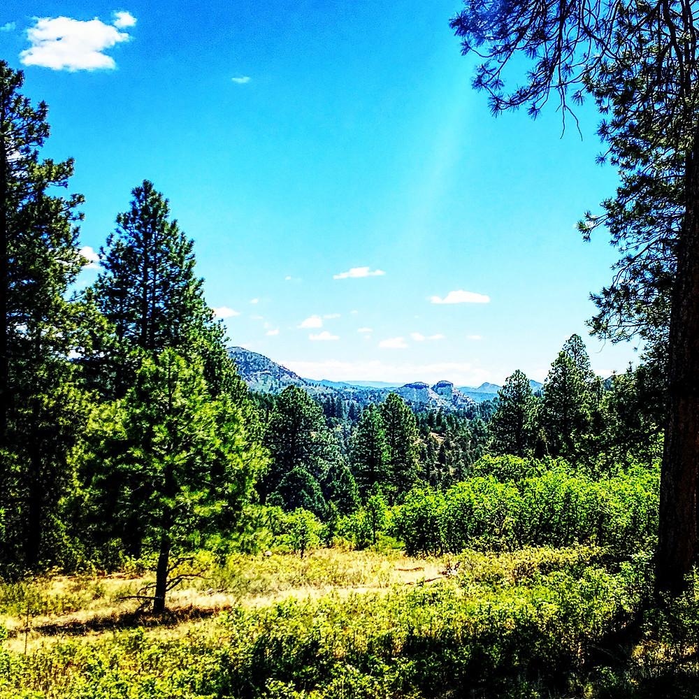 Twin Buttes, Durango, Colorado