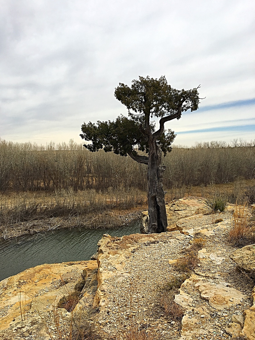 Clayton Lake Facing North