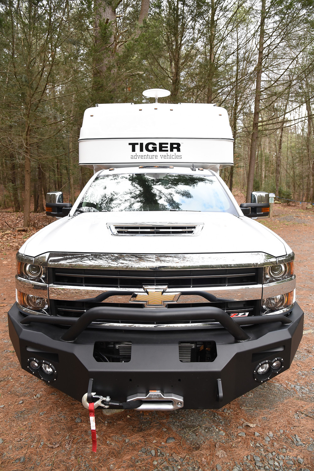 Tiger Adventure Vehicle