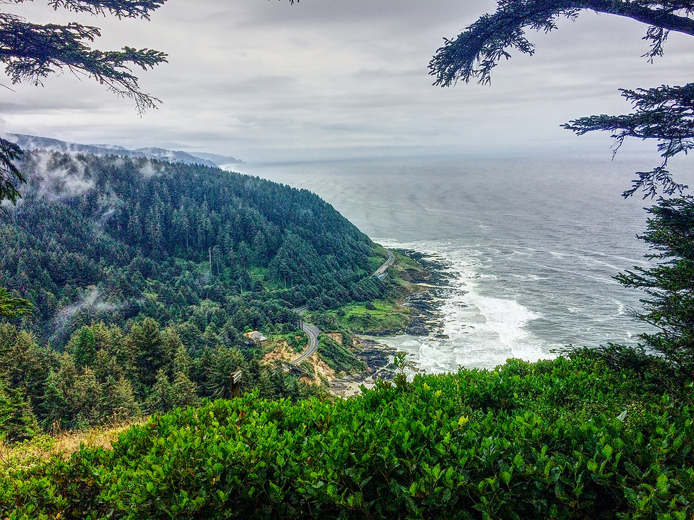 Cape Perpetua Scenic Area, Siuslaw National Forest