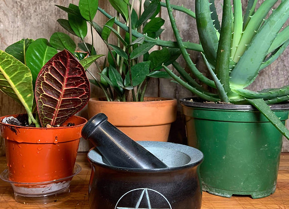 Pentacle Mortar and Pestle