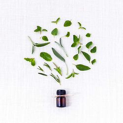 huile-essentielle-ravintsara-virus-hiver