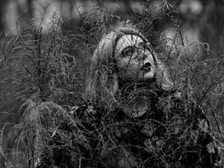 Portrait in the Fields
