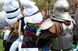 Pillow Fight Knight