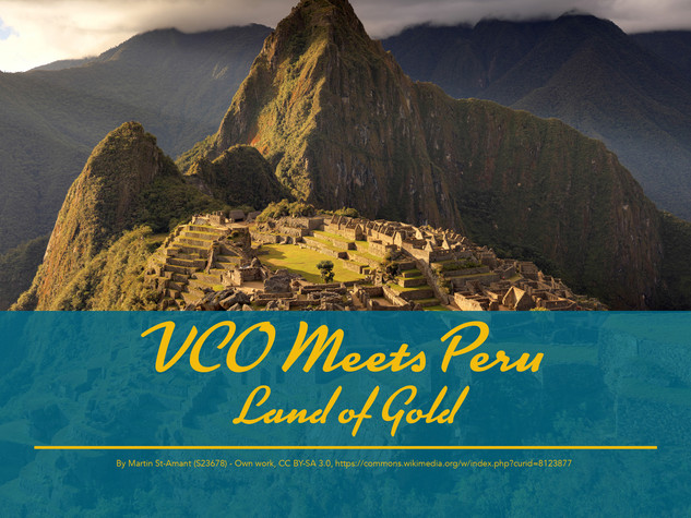 VCO Meets Peru
