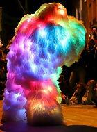 Les_Panachés_-shake_le_costume_crop.jpg