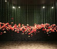 Gallery Stratford - Amanda McCavour Popp