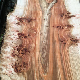 detailed pictures of Elm boards