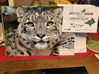 Driffield Show Win 2017