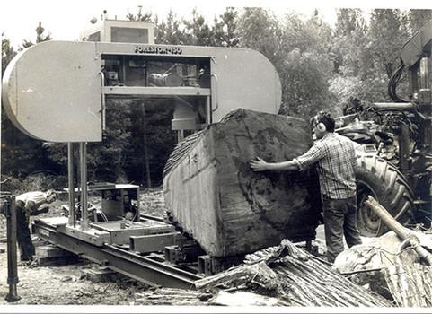 150 large log