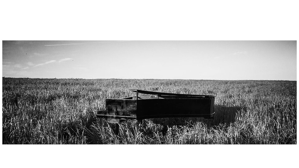 Boogie Me Piano in Field