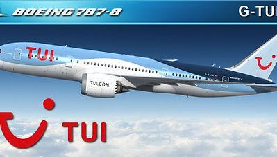 QW 787-8 | hangar226