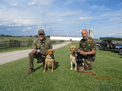 dice puppies - Lacey and Strider 6-1-12