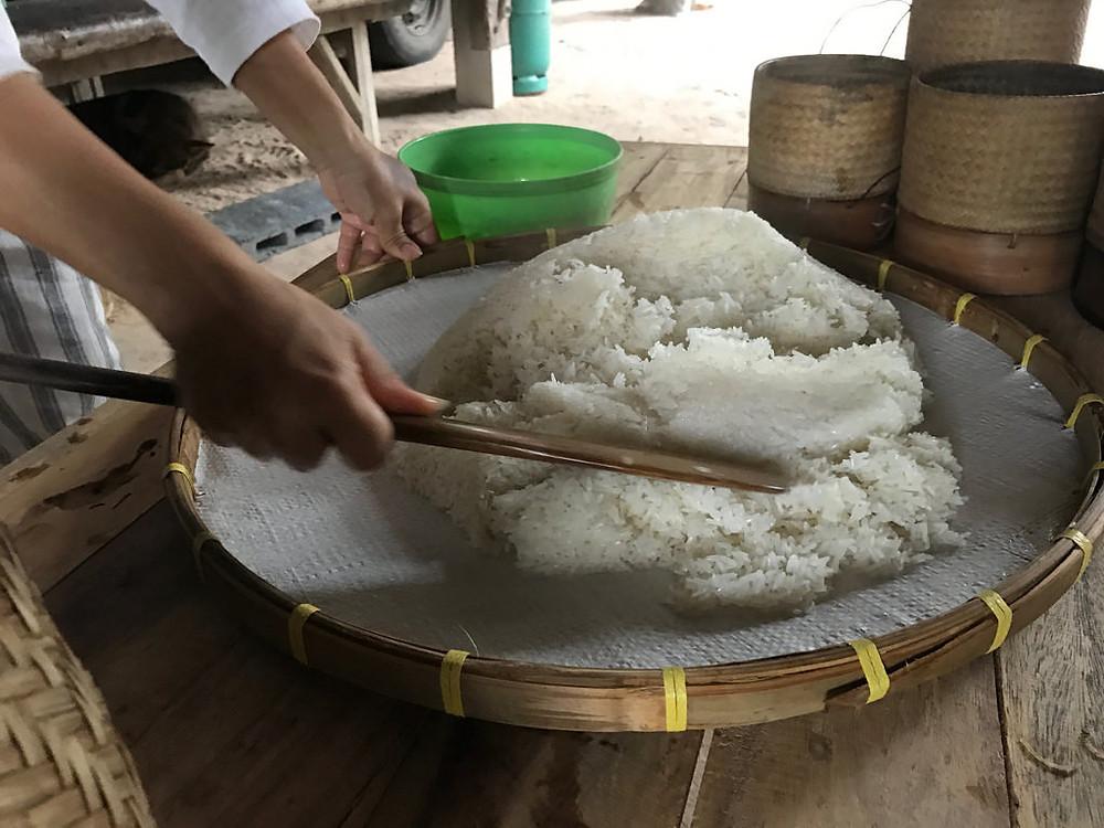 sticky rice preparation