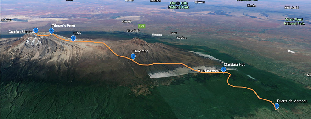 Kilimanjaro.jpeg