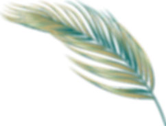 Sand and Teal Leaf-02.png
