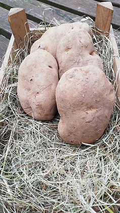 Potatoes (Roast/Mash) per kg
