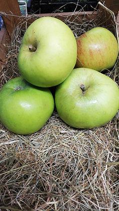 Apples Cooking (Bramleys) per kilo
