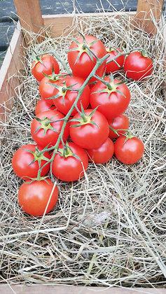 Tomatoes Cherry on vine per 100g