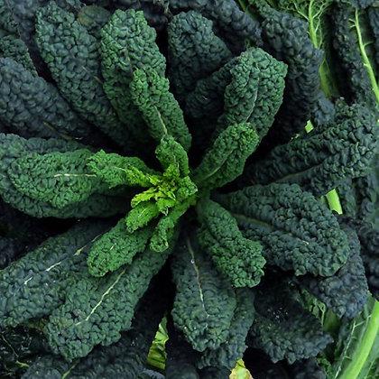 Kale Cavolo Nero (Black) 250g (approx.)