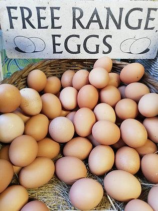 Eggs - Free Range x6