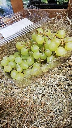 Grapes Green - per punnet