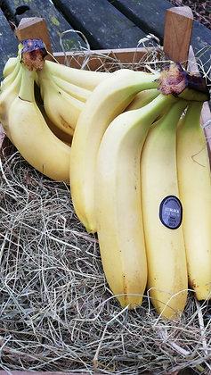 Bananas per kilo