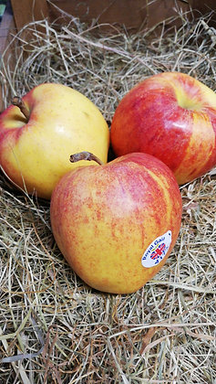 Apples Royal Gala per kilo