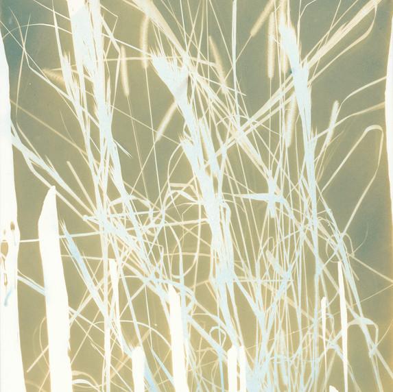 Botanical 13 (Gold)