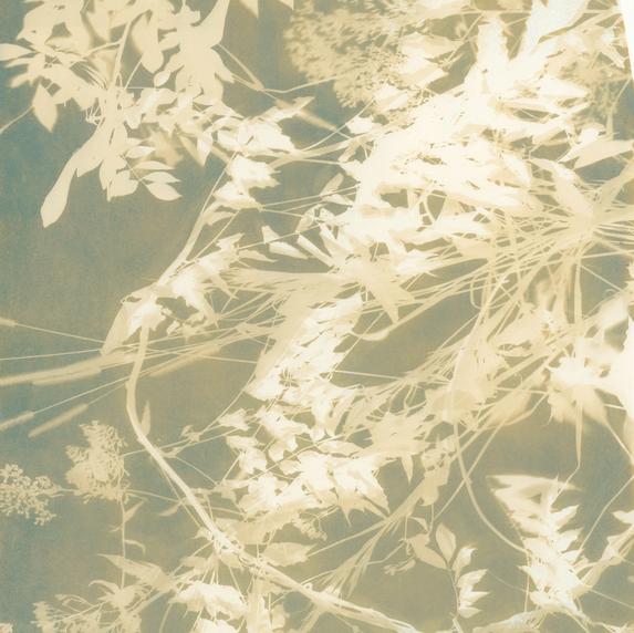 Botanical 1 (Gold)