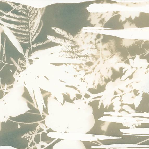 Botanical 5 (Grey)