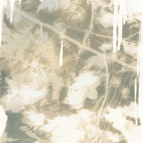 Botanical 3 (Grey)