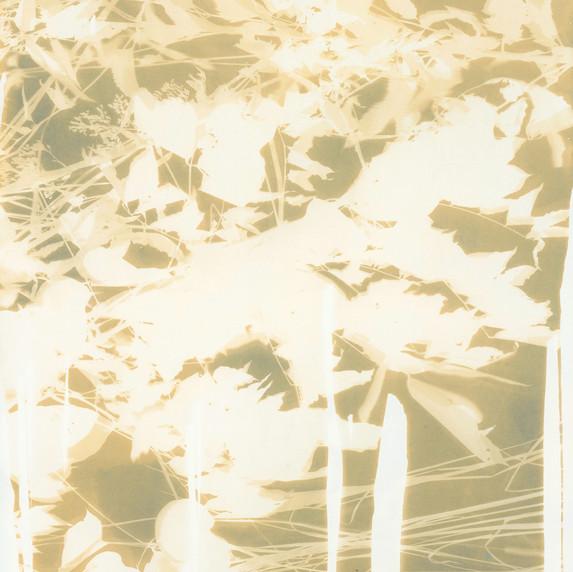 Botanical 2 (Gold)