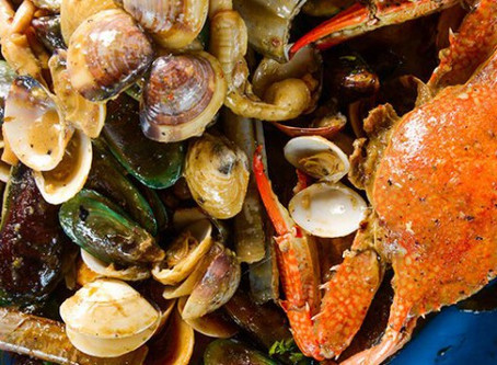 Baltimore Seafood Festival coming in September!
