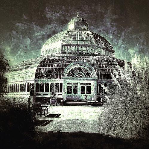 Sefton Palm House II