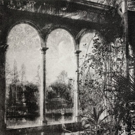 Windows Sefton Palm House II