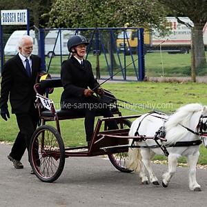 London Harness Horse Parade