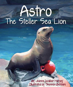 Astro the Steller Sea Lion