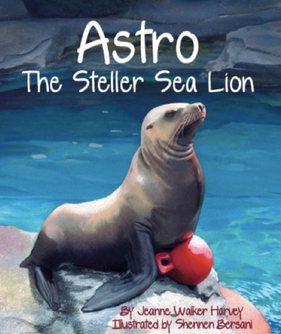 Astro The Steller Sea Lion