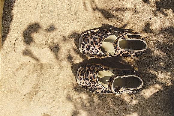 Lulú leopardo