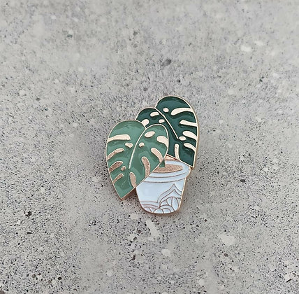Pin Monstera