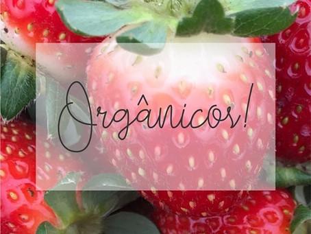 Todos nossos produtos são orgânicos