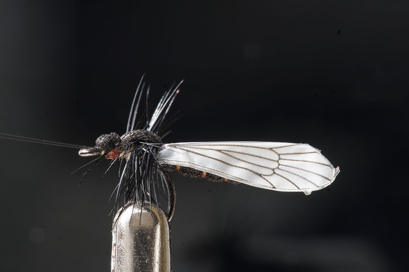J:Son Caddis Adult schwarz