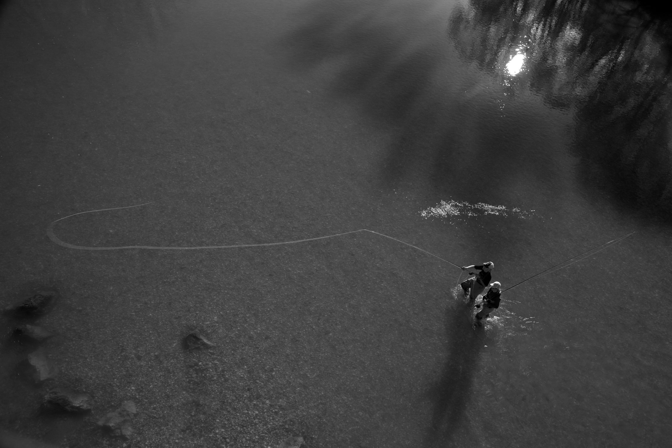 Wurfkurs Fliegenfischen flycasting