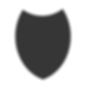 Security_Shield_Web_Solid_grey.png