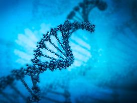 DNA-iStock_000016352578XLarge.tif