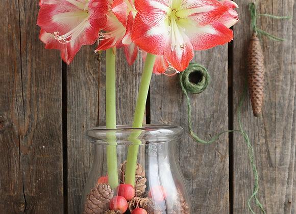 שלישית פרחים