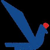 VIT-Pune-Logo_edited.png