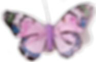 Pink-Butterfly-Transparent-PNG.png
