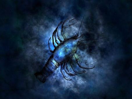 Né (e) sous le signe du Scorpion  ( 23 octobre-  22 novembre)